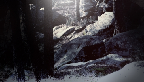 forest_painting_01